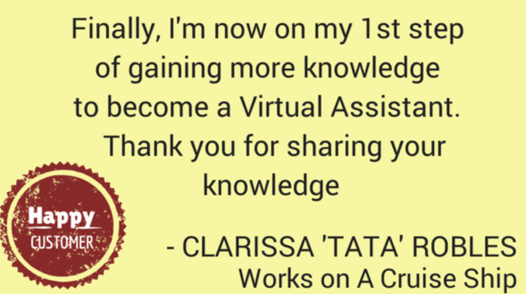 Virtual Professional